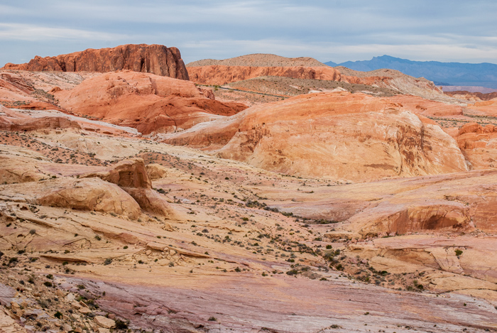 Valley of Fire Landscape © Tresha Glenister